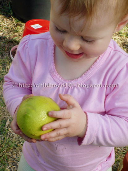 Growing vegetables with children via Childhood 101