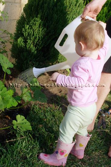 Growing vegetables with kids via Childhood 101