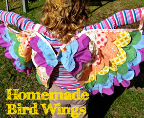 Homemade bird wings small | Childhood 101
