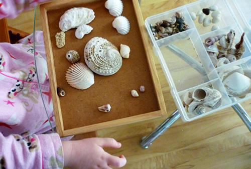 Sorting shells
