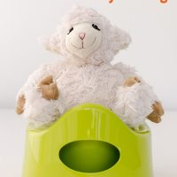 What Do I Need For Potty Training?