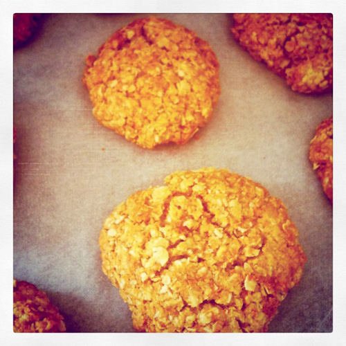 Anzac cookies bake with kids