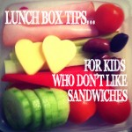 LUNCH BOX IDEAS FOR KIDS @Childhood101