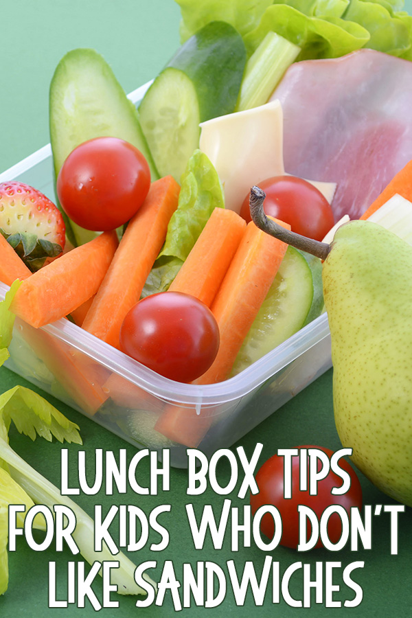 Lunch Box Tips for Kids Who Don't Like Sandwiches