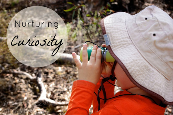 Nurturing Curiosity - An Everyday Story for Childhood 101
