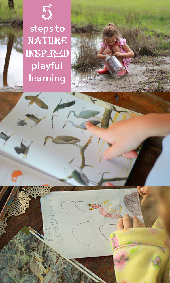 5 Steps to Nature Inspired Playful Learning
