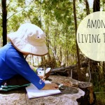Amongst living things - montessori thoughts on nature from An Everyday Story for Childhood 101