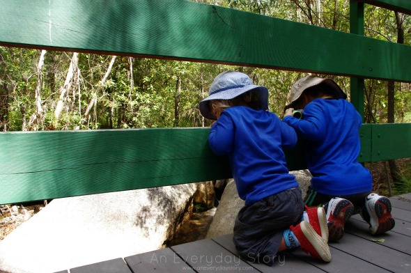 Learning first hand from nature - An Everyday Story for Childhood 101