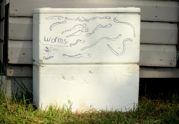 Practical Kids: Make a Worm Farm