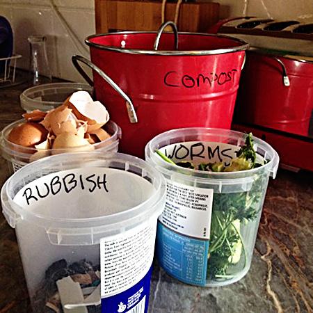 Easy Green_One bag of trash challenge_food waste