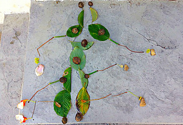 Math Games - Number learning in nature - Counting