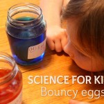 Science for Kids: Bouncy Eggs Experiment