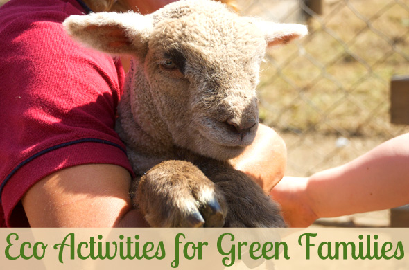 Eco Activities for Green Families