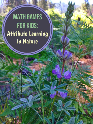 Math Games for Kids_Attributes in Nature