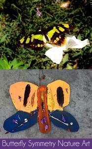 Butterfly Symmetry Art Butterfly