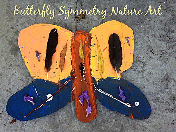 Butterfly Symmetry Nature Art