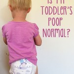 Is my toddlers poop normal