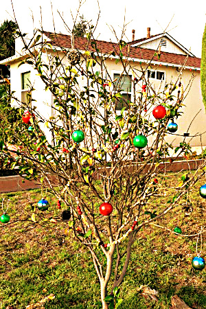 5 Nature Inspired Outdoor Christmas Projects - Wildlife Tree