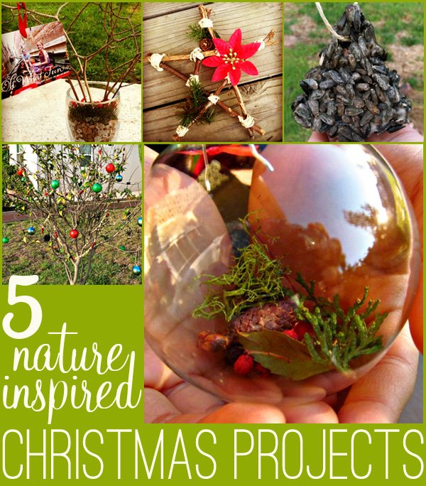 5 Outdoor Nature Inspired Christmas Projects