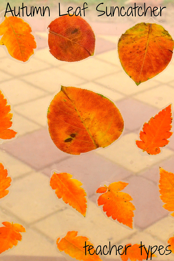 Autumn Learning: Leaf Suncatcher