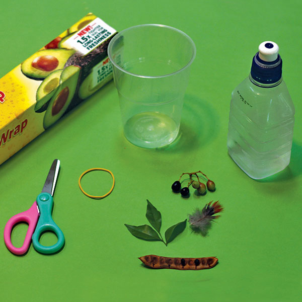 Cool Science for Kids- How to Make a Microscope
