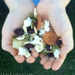 How to Make a Fabulous Trail Mix
