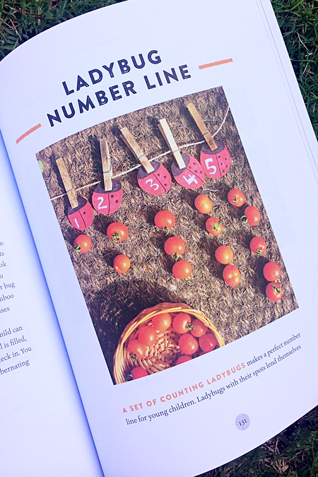 The Garden Classroom by Cathy James: A Review. Math Ideas
