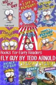 Great Books for Early Readers: Fly Guy book series review by Tedd Arnold