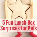 5 lunch box ideas your kids will love