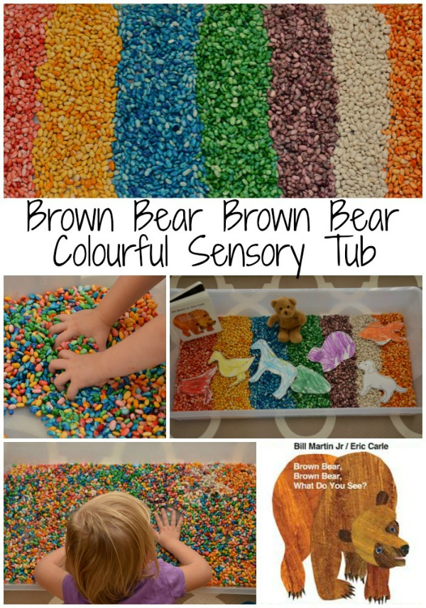 Brown Bear Brown Bear Book Inspired Colourful Sensory Bin
