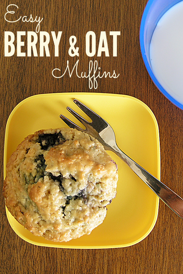 Easy Berry & Oat Muffin Recipe
