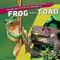 Frog and Toad Books for Kids