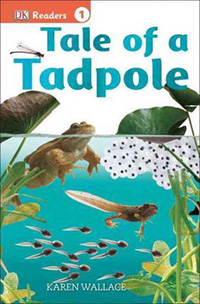 Tale of a Tadpole: Frog Lifecycle Books