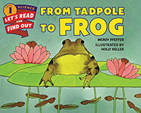 From Tadpole to Frog: Lifecycle Books for Kids