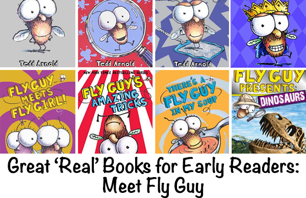 Fly Guys Books