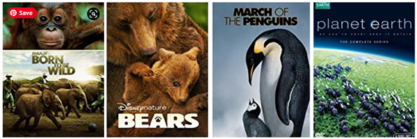 Best Nature Documentaries for Kids
